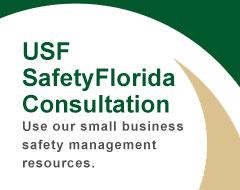 USF SafetyFlorida Consultation